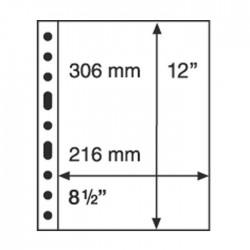 Hojas GRANDE 1C Leuchtturm para Billetes (5 unds.)