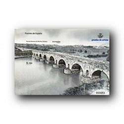2013 Prueba del Artista. Puente Romano de Mérida.
