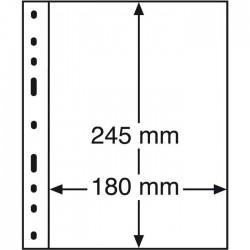 Hojas Leuchtturm OPTIMA 1C para billetes y documentos (10 unds.)