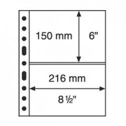 Hojas GRANDE 3C Leuchtturm para Billetes (5 unds.)