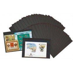 Fichas Clasificadoras de sellos Leuchtturm 148 x 105 mm - 3 bandas